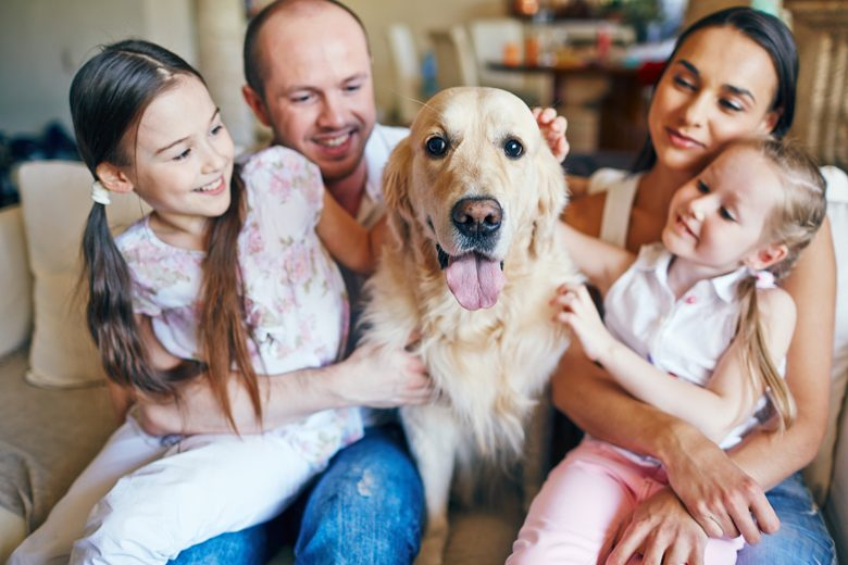 family-and-dog