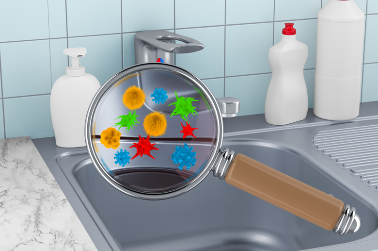 common household germs in the sink